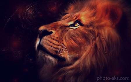 تعبیر خواب شیر جنگل سفید , تعبیر خواب شیر جنگل , تعبیر خواب شیر جنگل در خانه , شیر جنگل در خواب دیدن