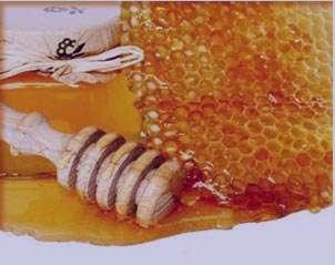 تعبیر خواب عسل با موم , تعبیر خواب عسل , تعبیر خواب عسل خوردن , عسل را در خواب دیدن
