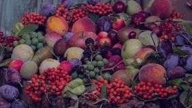 تعبیر خواب میوه چیدن از درخت , تعبیر خواب میوه , تعبیر خواب میوه خوردن , میوه در خواب دیدن