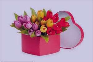 تعبیر خواب گل سفید , تعبیر خواب گل , تعبیر خواب گل رز , در خواب گل دیدن