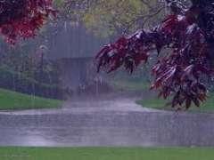 تعبیر خواب باران در شب , تعبیر خواب باران , تعبیر خواب باران در روز , باران در خواب دیدن