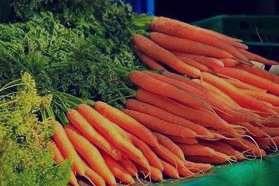 تعبیر خواب هویج , تعبیر خواب هویج خریدن , تعبیر خواب هویج پخته , تعبیر خواب هویج بستنی