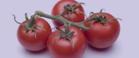 تعبیر خواب گوجه , تعبیر خواب گوجه فرنگی , تعبیر خواب گوجه سبز , گوجه در خواب دیدن