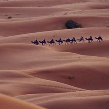 تعبیر خواب بیابان , تعبیر خواب بیابان خشک , تعبیر خواب بیابان صحرا