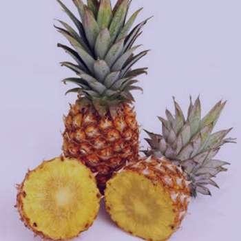 تعبیر خواب آناناس , تعبیر خواب آناناس خوردن , تعبیر خواب آناناس ابن سیرین