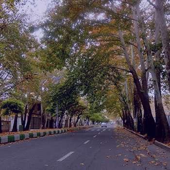 تعبیر خواب خیابان , تعبیر خواب خیابان شلوغ , تعبیر خواب خیابان تاریک