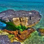 سفری لذت بخش به جزیره رویایی کیش