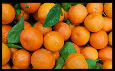 نارنج , خواص نارنج , فواید نارنج , نارنج برای پوست , نارنج برای سرماخوردگی , نارنج برای دیابت