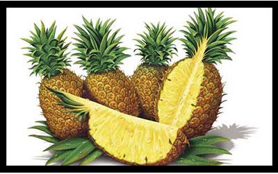 آناناس , خواص آناناس , فواید آناناس , آناناس و دیابت , آناناس در بارداری , آناناس شکستگی استخوان