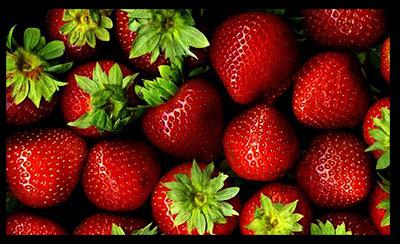 توت فرنگی , خواص توت فرنگی , فواید توت فرنگی , توت فرنگی و بارداری , توت فرنگی و دیابت , توت فرنگی و سرما خوردگی