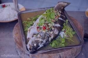 طرز تهیه ماهی بخارپز , ماهی بخارپز , روش پخت ماهی بخارپز