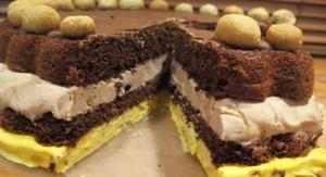 طرز تهیه کیک بستنی شکلاتی , کیک بستنی شکلاتی , دستور پخت کیک بستنی شکلاتی