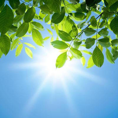 شعر در مورد آفتاب
