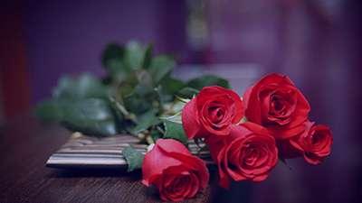 عکس گل , دانلود عکس گل , عکس گل زیبا , عکس گل برای پروفایل , عکس گل متحرک , عکس گل برای تسلیت