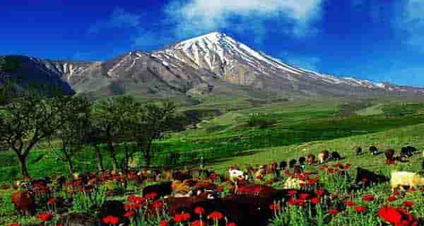 شعر در مورد کوه