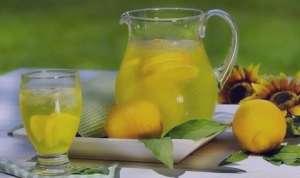 طرز تهیه لیموناد زمستانی , لیموناد زمستانی , طرز تهیه لیموناد