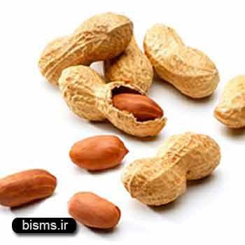 بادام زمینی , بادام زمینی در بارداری , بادام زمینی و نقرس , بادام زمینی چاق کننده است
