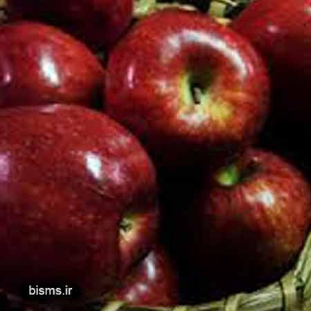 سیب ، خواص سیب ، سیب در بارداری ، سیب در دوران بارداری ، سیب در لاغری ، سیب در بدنسازی