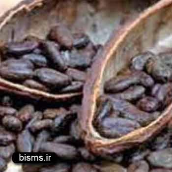 کاکائو ، خواص کاکائو تلخ , کاکائو در بارداری , کاکائو و کم خونی , کاکائو برای کودکان , کاکائو برای سرماخوردگی