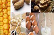 عوامل آلرژی غذایی
