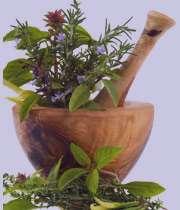 کاهش وزن با استفاده از گیاهان دارویی