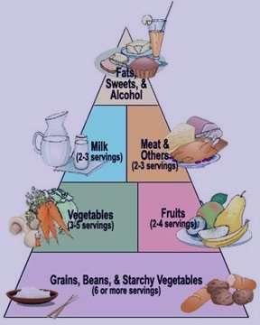 دانستنی های جالب در مورد دیابت نوع 1