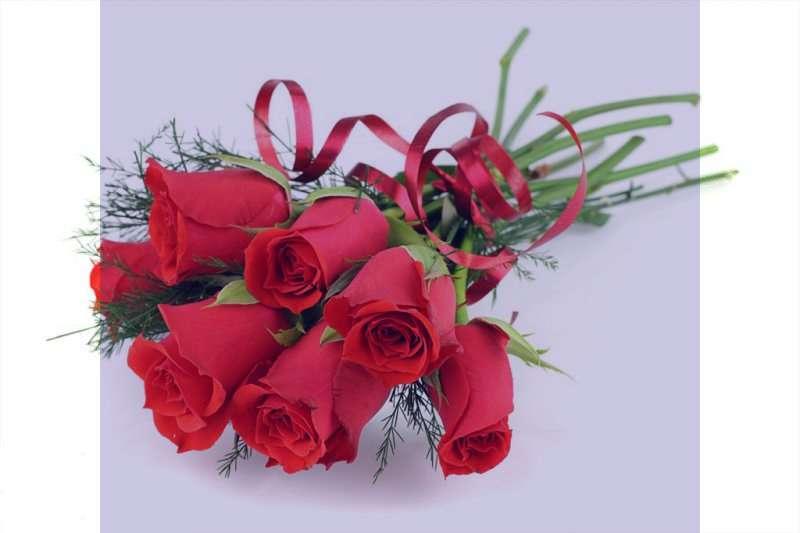گلچین زیباترین عکس گل رز سرخ و سفید و آبی