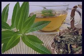خواص به لیمو در طب سنتی ، خواص به لیمو طب سنتی ، خواص گیاه به لیمو در طب سنتی ، خواص شربت به لیمو در طب سنتی