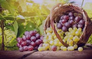انگور قرمز و فشار خون , انگور و فشار خون , شیره انگور و فشار خون , شراب انگور و فشار خون