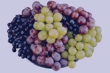 انگور در قرآن , انگور در قرآن کریم , خواص انگور در قرآن , انگور در آیات قرآن