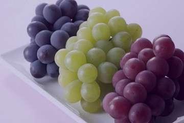 خواص انگور برای پوست , خواص انگور برای پوست چیست , خواص سرکه انگور برای پوست , خواص شیره انگور برای پوست