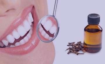 میخک برای دندان درد , میخک برای دندان درد در بارداری , میخک برای دندان درد خوب است , گل میخک برای دندان درد