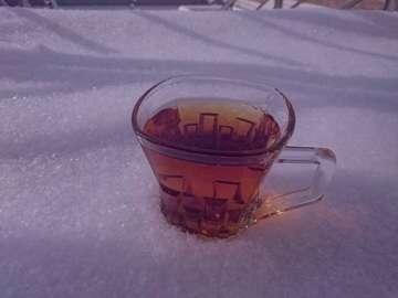 چای در برف , چای در برف , عکس چای در برف , چای داغ در برف