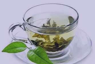 چای سبز و یبوست , خواص چای سبز و یبوست , مصرف چای سبز و یبوست , رابطه چای سبز و یبوست