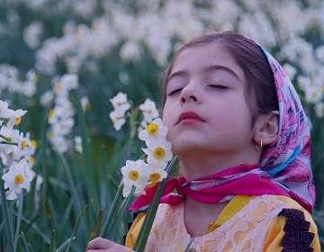 گل نرگس در روایات , خواص گل نرگس در روایات , گل نرگس روایات , دمنوش گل نرگس
