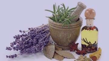 گل گاوزبان و سنبل طیب , گل گاوزبان سنبل الطیب , گل گاوزبان و سنبل طیب , گل گاوزبان و سنبل الطیب