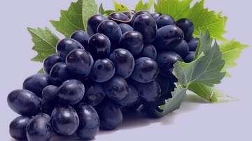 خواص انگور سیاه در بارداری , خواص انگور قرمز در بارداری , خاصیت انگور سیاه در بارداری , فواید انگور سیاه در بارداری