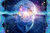 طریقه مصرف کندر و تقویت حافظه در کودکان و آلزایمر