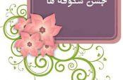 گلچین زیباترین شعر در مورد جشن شکوفه ها
