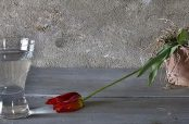 گلچین زیباترین شعر در مورد جفای یار