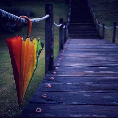 شعر در مورد چتر
