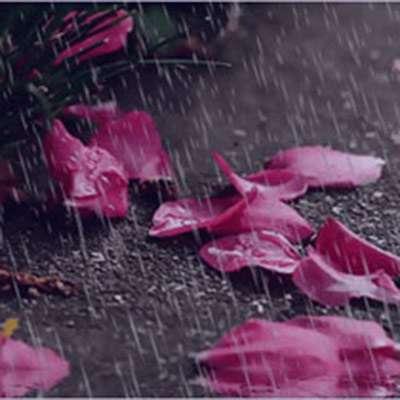 شعر در مورد صدای باران