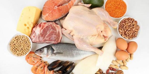 گوشت های حلال , انواع گوشت های حلال , گوشت های دریایی حلال , گوشت های حلال در اسلام