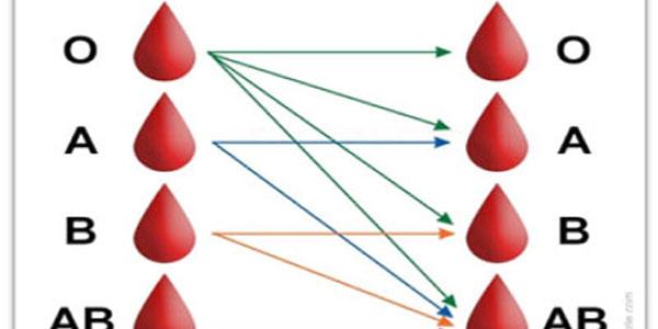 ارتباط بین گروه خونی افراد و ازدواج چیست؟