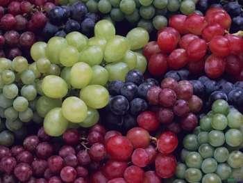 خواص درمانی انگور در طب سنتی از نظر پزشکان