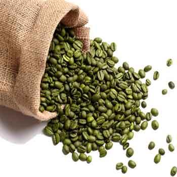 چای لاغری قهوه سبز