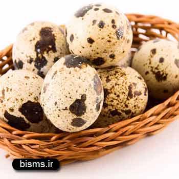 تخم بلدرچین،خواص تخم بلدرچین