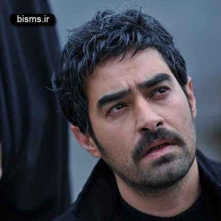 عکس جدید و دیدنی شهاب حسینی و همسرش