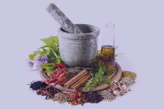لاغری با گیاهان دارویی مفید