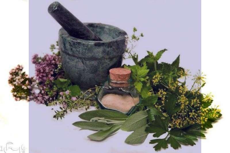 گیاهان دارویی افزایش دهنده قدرت باروری